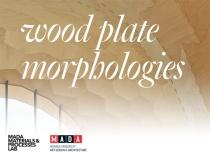 Wood plate morphologies workshop, Melbourne